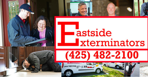 eastside-exterminators-glbtyp